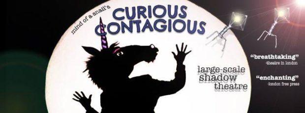 Curious Contagious