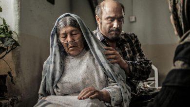 Photo of هجرت نامه را مهاجر می نویسد